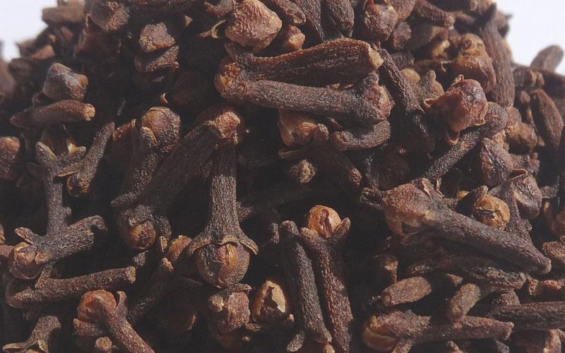 Bier brouwen met kruidnagels | Brouwbeesten