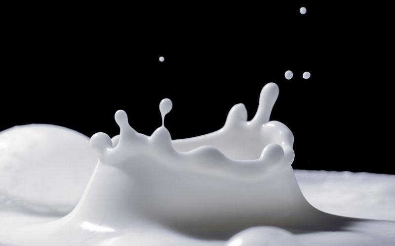 Bier Brouwen met lactose | Brouwbeesten